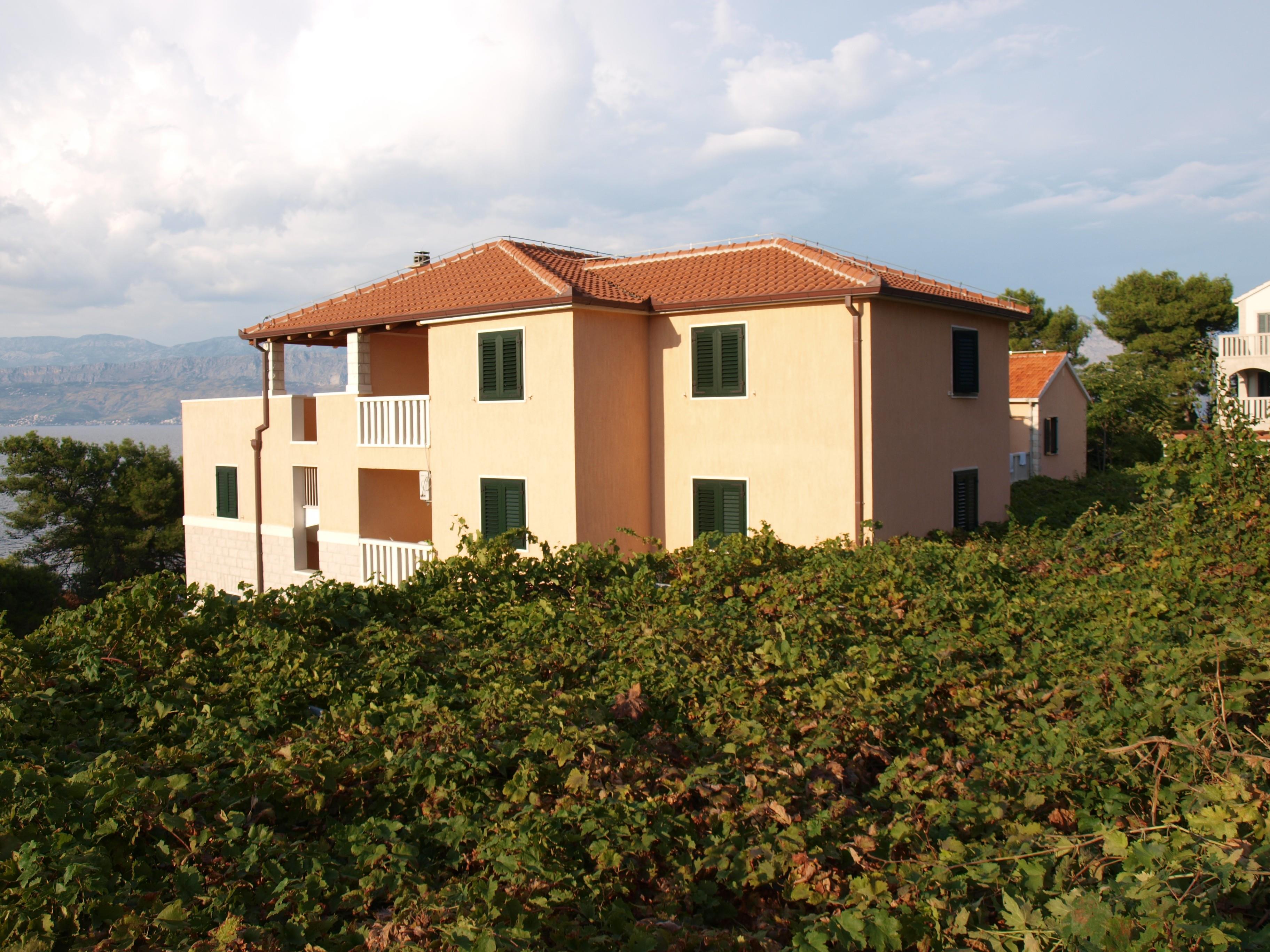 Holiday apartment Apartments `anti / Two bedroom A6 (1867683), Postira, Island of Brac, Dalmatia, Croatia, picture 1