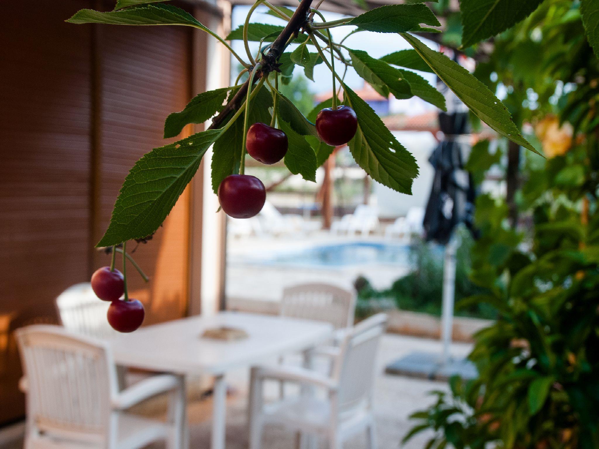 Ferienwohnung Apartments Maya / Two bedroom Apartment White A1 (1740092), Medulin, , Istrien, Kroatien, Bild 40